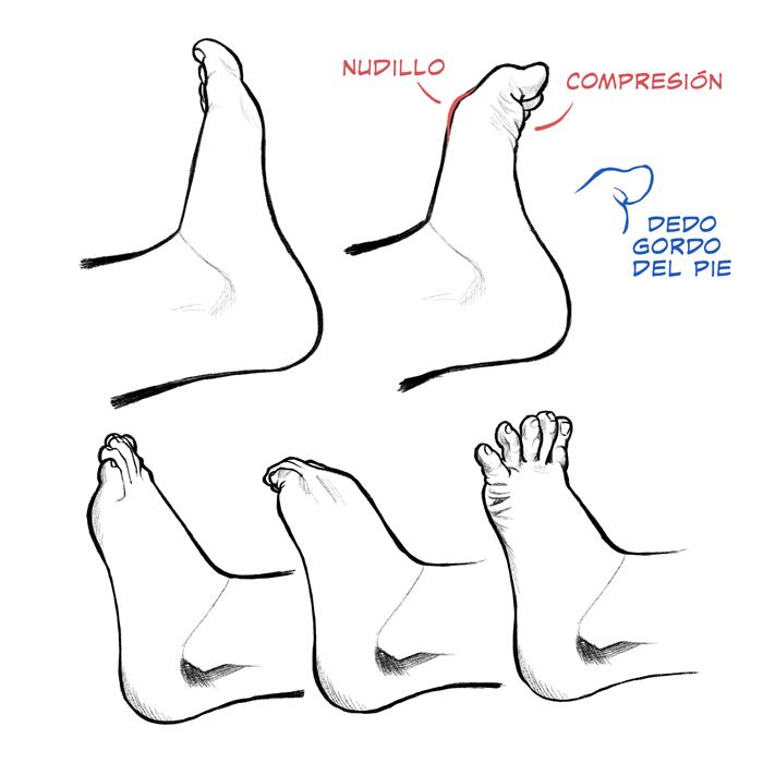 extender los dedos de los pies para las varices