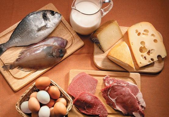alimentos que tienen altos contenidos de grasas de animales