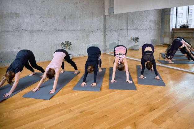 chicas haciendo el desafío plank